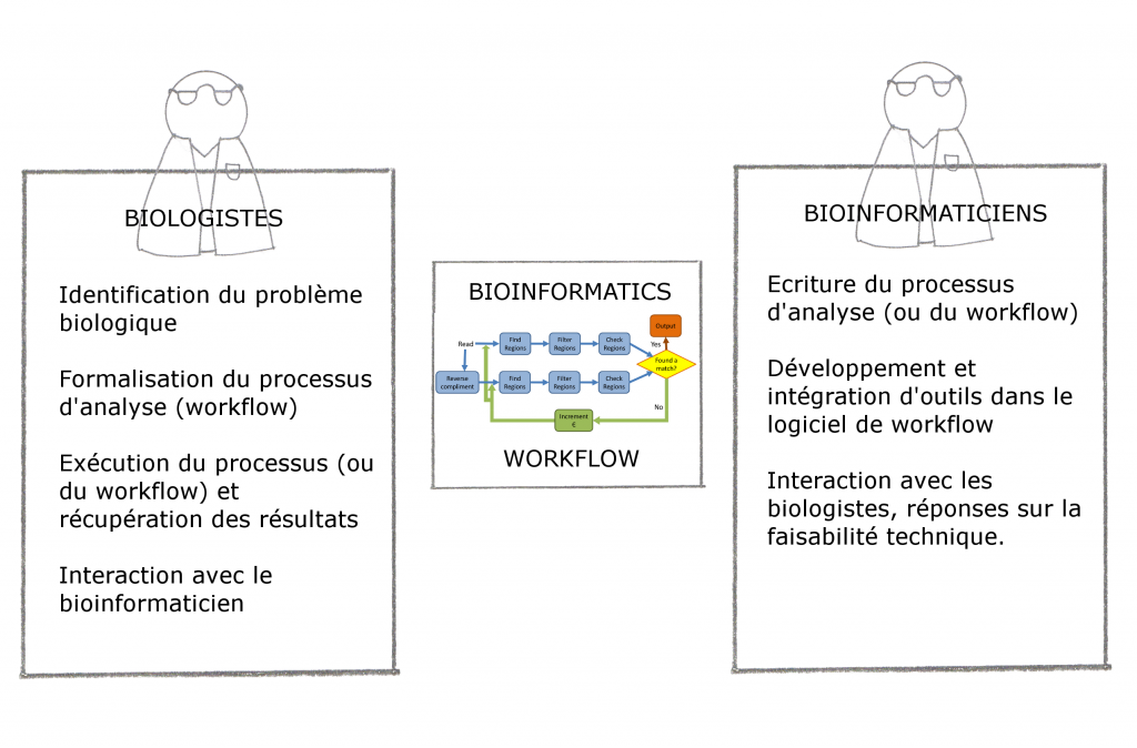 workflow - interaction et intégration - biologistes et bioinformaticiens
