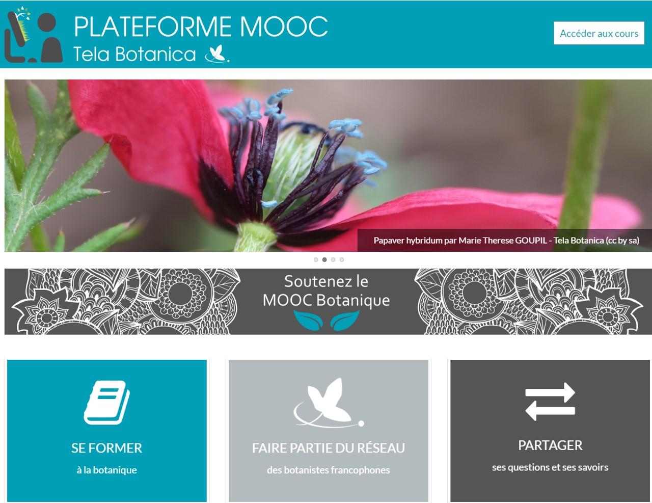 MOOC_tela_botanica